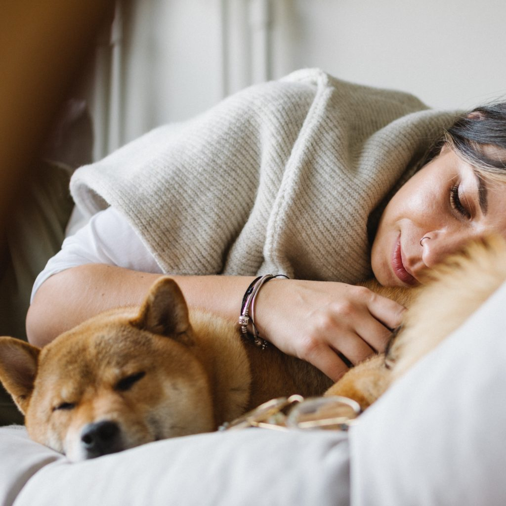 What Does It Mean If Your Dog Sleeps On You